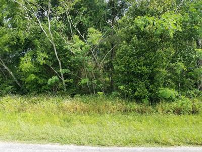 Residential Lots & Land For Sale: .44 Acres Cherry Street