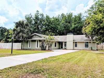 Berrien County, Brooks County, Cook County, Lanier County, Lowndes County Single Family Home For Sale: 503 4-H Club Road