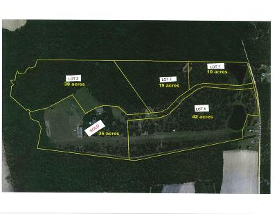 Berrien County, Lanier County, Lowndes County Residential Lots & Land For Sale: 5808 #4 McDonald Road