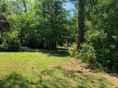 Berrien County, Lanier County, Lowndes County Residential Lots & Land For Sale: 603 Georgia Ave