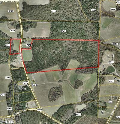 Commercial Lots & Land For Sale: Webb Road