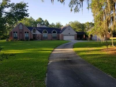 Berrien County, Brooks County, Cook County, Lanier County, Lowndes County Single Family Home For Sale: 18 Darsey Road