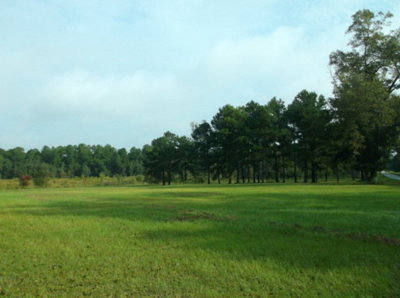 Residential Lots & Land For Sale: 7 Acres Shiloh Road