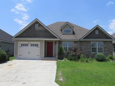 Single Family Home For Sale: 4091 Willow Round Road
