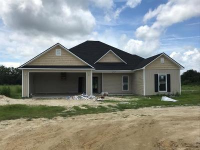 Berrien County, Brooks County, Cook County, Lowndes County Single Family Home For Sale: 6167 Brayden Way
