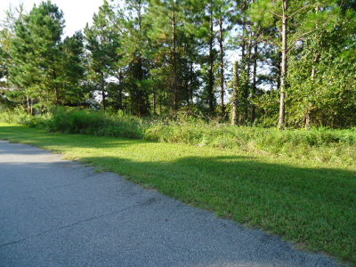 Lake Park Residential Lots & Land For Sale: 5525 Ponciana Lane(Cypress Lakes)