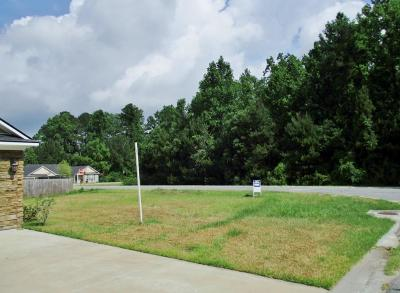 Berrien County, Lanier County, Lowndes County Residential Lots & Land For Sale: 5087 N Greyfield Place