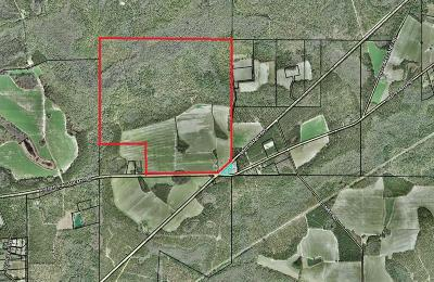 Commercial Lots & Land For Sale: Knights Academy/Lakeland Highway