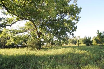Berrien County, Lanier County, Lowndes County Residential Lots & Land For Sale: 3409 Lakeland Hwy