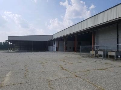 Cook County Commercial For Sale: 2476 Hwy 76