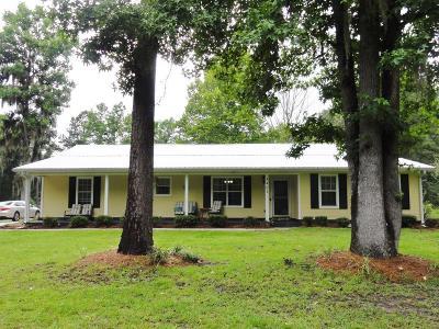 Berrien County, Brooks County, Cook County, Lanier County, Lowndes County Single Family Home For Sale: 3407 Skipper Bridge Rd