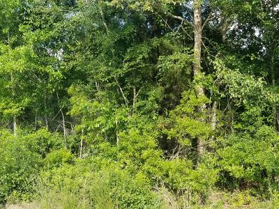 Berrien County Residential Lots & Land For Sale: Lots Sandridge