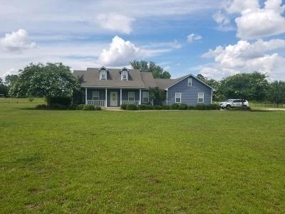 Berrien County, Brooks County, Cook County, Lanier County, Lowndes County Single Family Home For Sale: 1691 Hwy 168