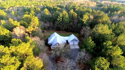 Lowndes County Single Family Home For Sale: 6264 N Highway 41