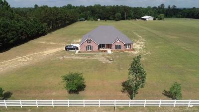 Valdosta Single Family Home For Sale: 7545 Woodfield Road