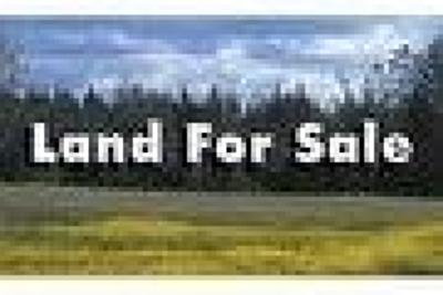 Lanier County Residential Lots & Land For Sale: 6 Owens Glenn