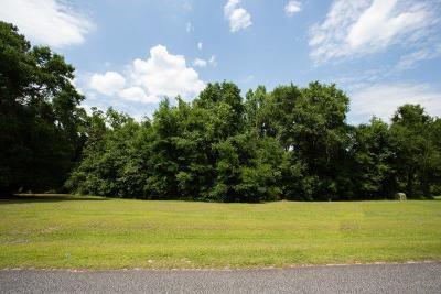 Residential Lots & Land For Sale: Tbd Water Oak Trail