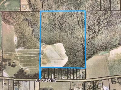 Commercial Lots & Land For Sale: 7232 Ousley Road