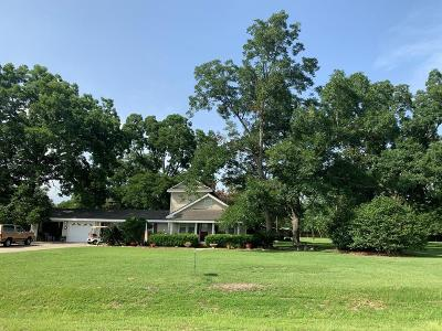 Hahira Single Family Home For Sale: 5138 Coppage Road