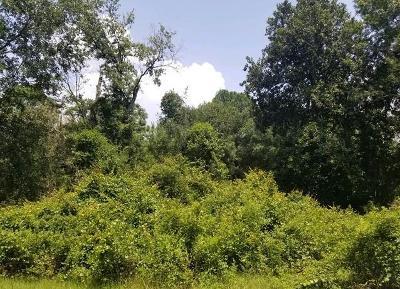 Lanier County Residential Lots & Land For Sale: Lot Bended Oak Lane