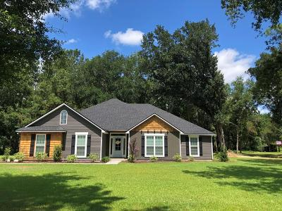 Berrien County, Brooks County, Cook County, Lanier County, Lowndes County Single Family Home For Sale: 6359 S Coffee Rd
