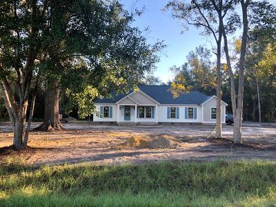 Nashville Single Family Home For Sale: 249 White Pond Rd