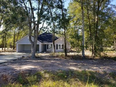 Berrien County, Brooks County, Cook County, Lanier County, Lowndes County Single Family Home For Sale: 58 Brookfield Drive