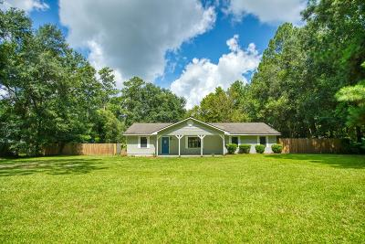 Berrien County, Brooks County, Cook County, Lanier County, Lowndes County Single Family Home For Sale: 4577 Cindy Street Ext.