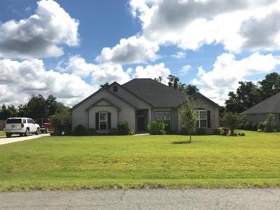 Berrien County, Brooks County, Cook County, Lanier County, Lowndes County Single Family Home For Sale: 17 Barrett Lane