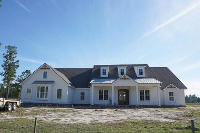 Berrien County, Brooks County, Cook County, Lowndes County Single Family Home For Sale: 3994 Timber Ridge Road