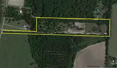 Berrien County, Lanier County, Lowndes County Residential Lots & Land For Sale: 14.91 Ac Old Valdosta Rd.