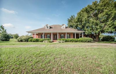 Nashville Single Family Home For Sale: 2978 Hwy 37