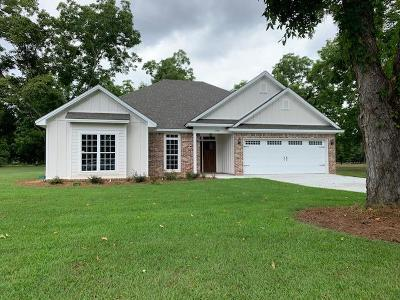Berrien County, Brooks County, Cook County, Lanier County, Lowndes County Single Family Home For Sale: 3533 Desirable Drive