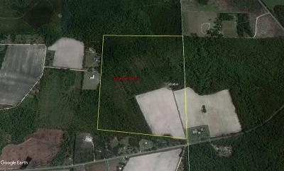 Nashville GA Commercial Lots & Land For Sale: $395,000