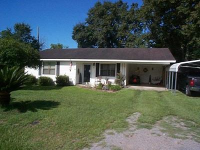 Adel Single Family Home For Sale: 803 N Gordon Ave.