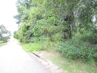 Residential Lots & Land For Sale: Lot 2 Cross Creek Trail