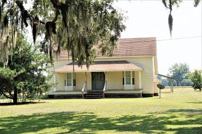 Valdosta Single Family Home For Sale: 4689 Mount Zion Road