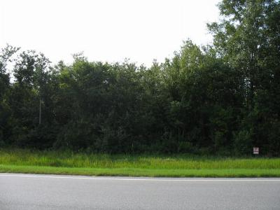 Commercial Lots & Land For Sale: 1311 S Hwy 221 Tract 1