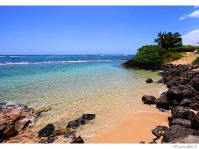 Laie Single Family Home For Sale: 55-295 Kamehameha Highway