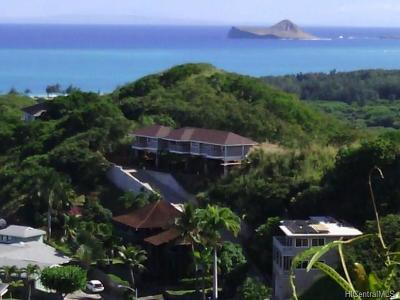 Honolulu, Kailua, Waimanalo, Honolulu, Kaneohe Rental For Rent: 1440 Auwaiku Street #A