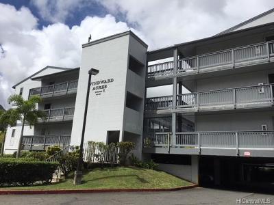 Kaneohe Rental For Rent: 46-267 Kahuhipa Street #C203