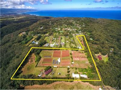 Haleiwa Single Family Home For Sale: 59-705 Pupukea Road