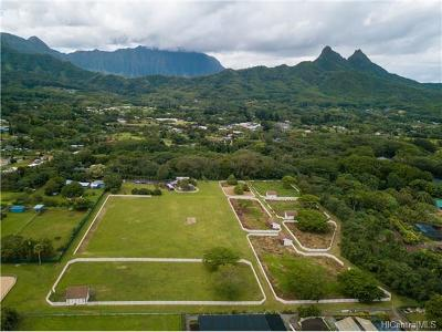 Waimanalo Single Family Home In Escrow Showing: 41-702 Mooiki Street