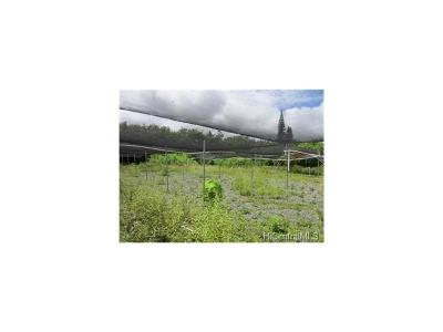 Waimanalo Residential Lots & Land For Sale: Lot 18-B Waikupanaha Street