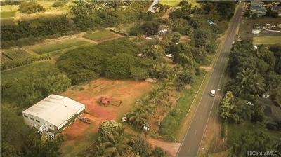 Single Family Home For Sale: 66-265 Waialua Beach Road