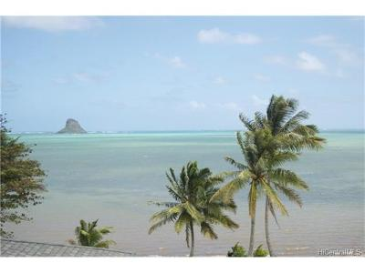 Single Family Home For Sale: 48-471 Kamehameha Highway #C1
