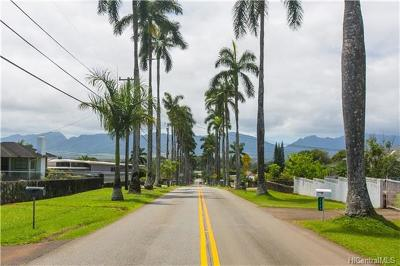 Wahiawa Single Family Home For Sale: 1780 Royal Palm Drive