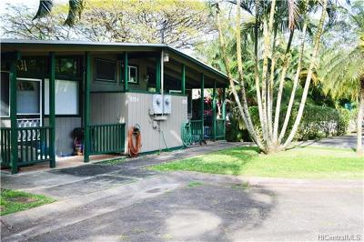 Wahiawa Multi Family Home For Sale: 834 Kokoloea Place