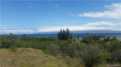 Maui County Residential Lots & Land In Escrow Not Showing: 81 Uluanui Road #Lot #111