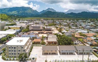 Kailua Multi Family Home For Sale: 101,117 Maluniu Avenue